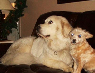 Frank & her buddy