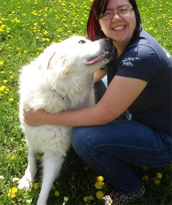 Great Pyr Rescue - Mister