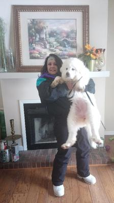 My lovely wife and Daisy at 12 wks.