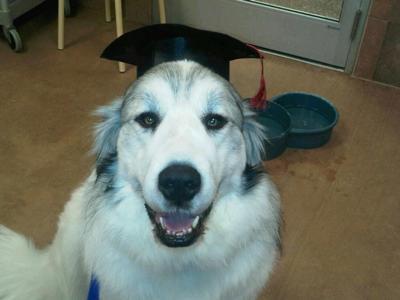 Garrett's Graduation Picture